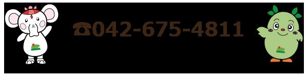 042-675-4811
